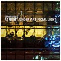 Ginormous: AT NIGHT UNDER ARTIFICIAL LIGHT