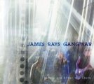 James Ray Gangwar: BEFORE AND AFTER THE STORM LIVE 1993 (LTD ED) CD