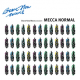 Mecca Normal: BRAVE NEW WAVES SESSIONS CD