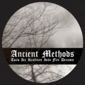 Ancient Methods: TURN ICE REALITIES INTO FIRE DREAMS VINYL 12""