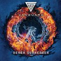 Vanguard: NEVER SURRENDER CD