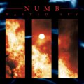 Numb: WASTED SKY (LTD ED) VINYL LP