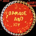 Jesus and Mary Chain, The: DAMAGE AND JOY VINYL 2xLP